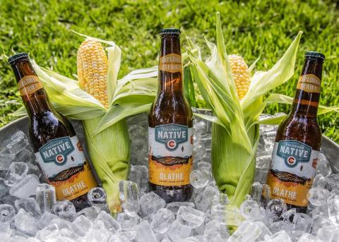 Our summertime favorite is back! Olathe Sweet Corn Lager brewed with 100% Colorado ingredients and perfect for your next evening BBQ. . . . #coloradonativebeer #coloradonative #coloradoproud #100percentcoloradoingredients #onlyavailableincolorado #olathe #olathesweetcorn #westslopebestslope #coloradobeer #localbeer